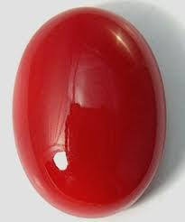 Oval Moonga (Red Coral)