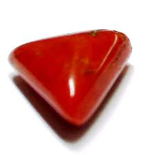 triangular red coral
